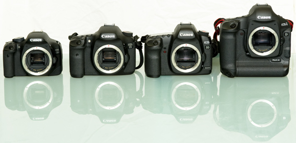The Canon DSLR family compared - 550D, 7D, 5Dmk II and 1Dmk IV