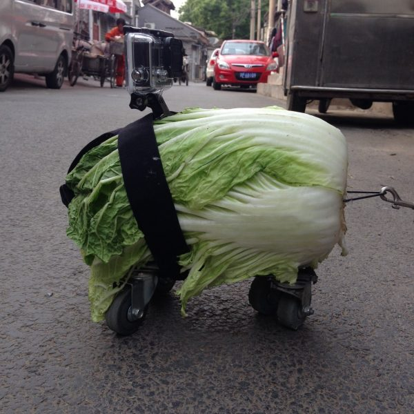 Of course I also took my GoPro for a ride on the cabbage