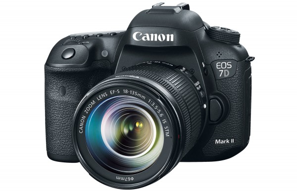The Canon 7D mkII with 18-135mm STM lens