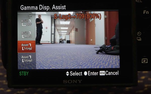 Gamma Display Assist S-Log2 709 (800%)