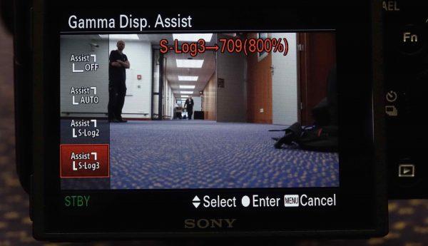 Gamma Display Assist S-Log3 709 (800%)