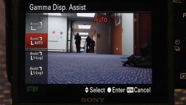 Gamma Display Assist Auto setting