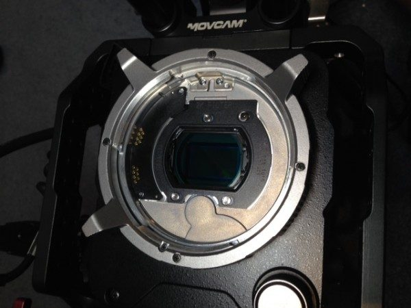 The Sony CBK-55F2K optical low pass filter for F55 (Photo by Matt Allard)