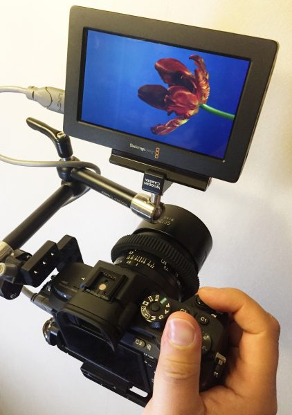 The Blackmagic Design Video Assist
