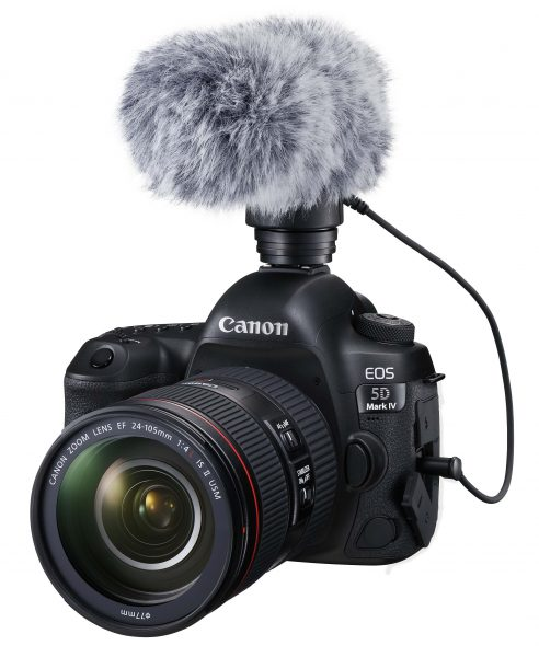 Audio is catered for with a 3.5mm mic jack. There is no Canon XLR option.