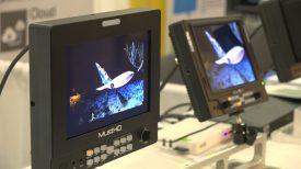 Newsshooter at NAB NY 2016 MustHD M703S monitor