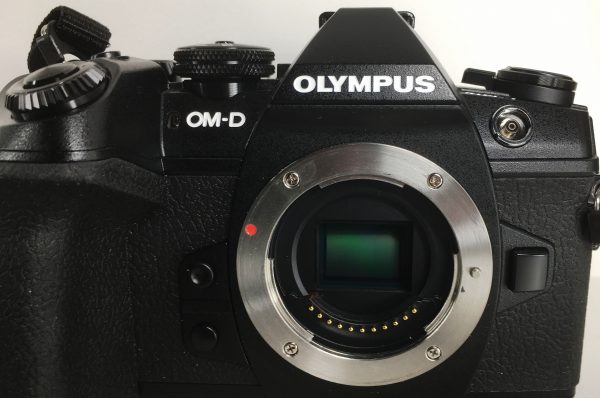 The OMD E-M1 II has sensor shift stabilisation for all lenses