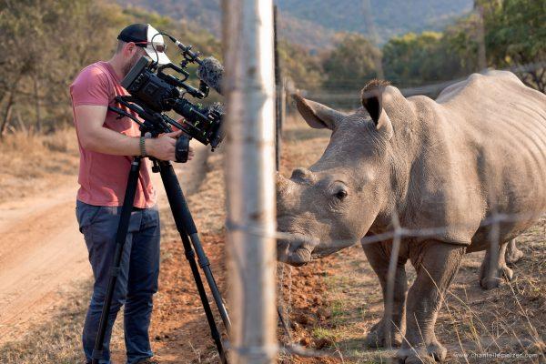 Garth de Bruno Austin using a Blackmagic Ursa Mini 4K on location, filming an orphaned rhino