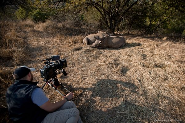 Garth de Bruno Austin using a Blackmagic Ursa Mini 4K on location, filming an orphaned rhino.