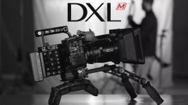 DXL M