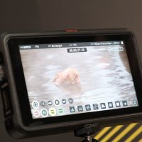 CES Atomos and Nikon develop ProRes Raw with HDMI out to Ninja V