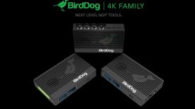 birddog 4k ndi