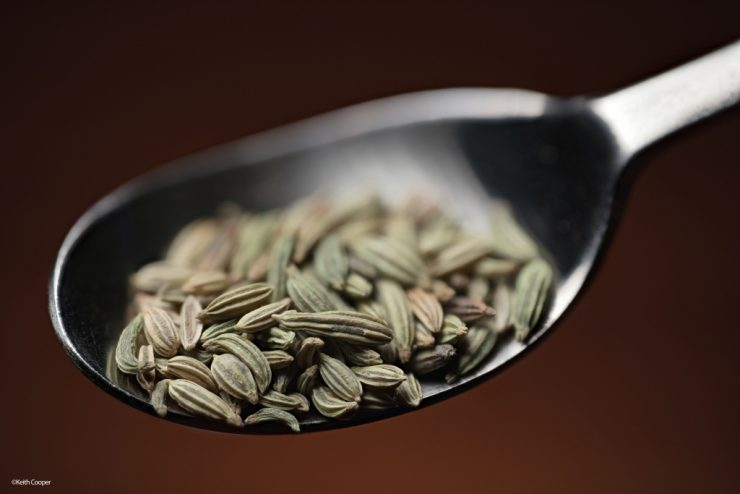 seeds in spoon 1 1024x683