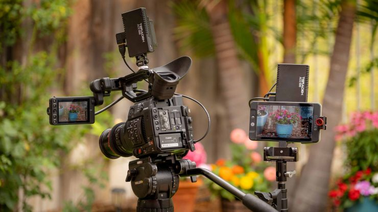 Teradek ACE 500 mounted C300 SmallHD 702