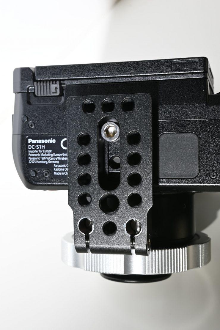 DSC 3869 01