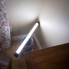 L ion in corner