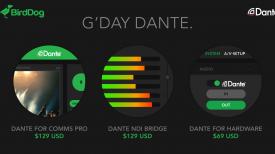 BD Dante general banner 01