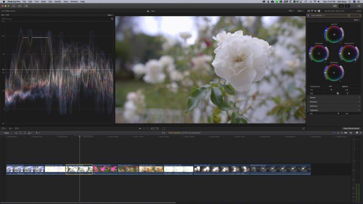 Screen Shot 2020 05 11 at 3 47 44 PM