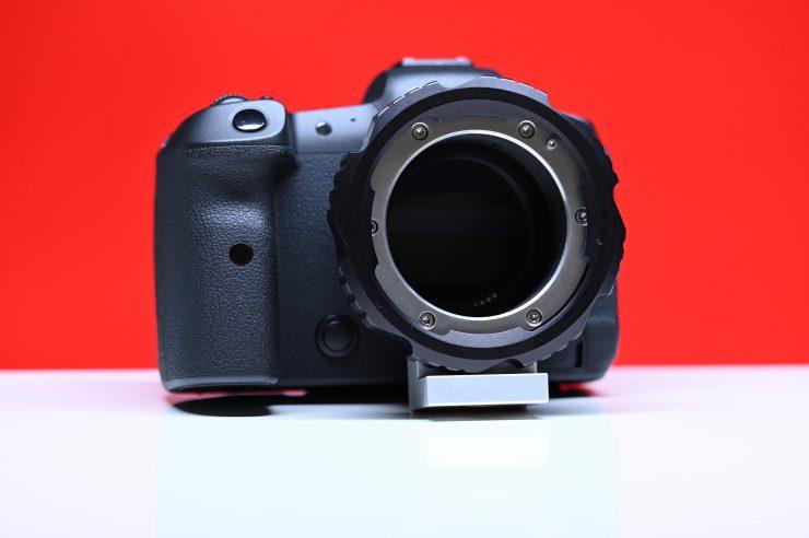 DSC 3554 01