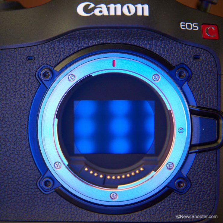 Canon C70 Sensor