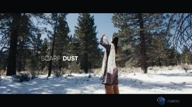 Scarf Dust Diffusion Filter
