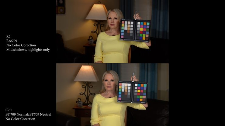 Skin Tone Tests R5 and C70