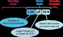Naming of Recording Formats