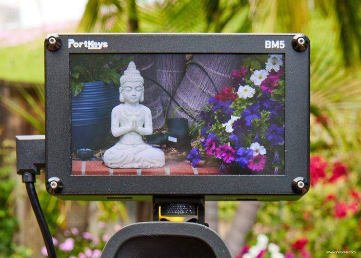 Pocket Cinema Camera 6K Pro LCD Color Issue 1