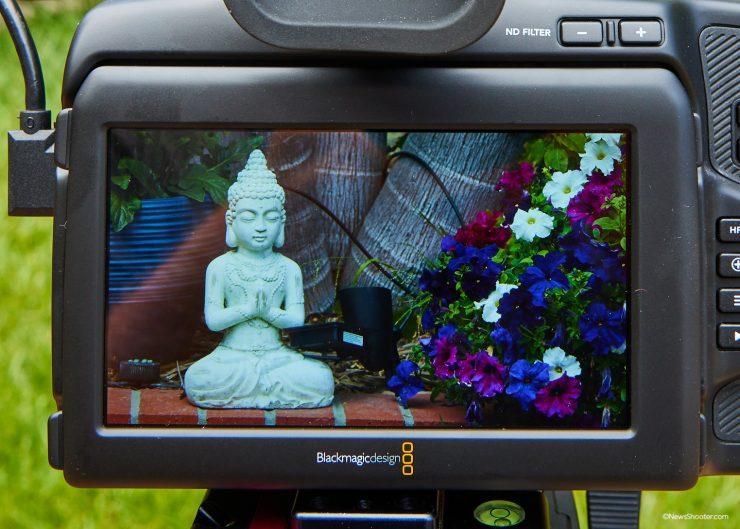 Pocket Cinema Camera 6K Pro LCD Color Issue 2 1