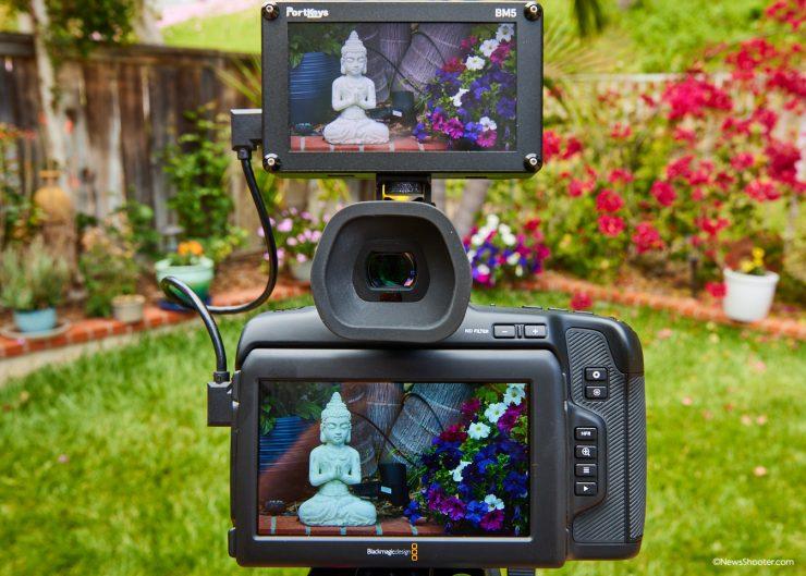 Pocket Cinema Camera 6K Pro LCD Color Issue