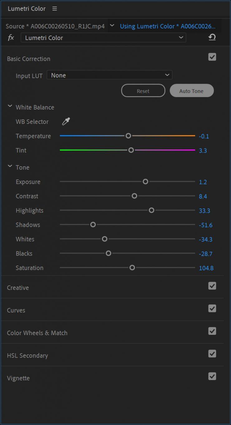 Premiere Pro Auto Tone Detail Beta